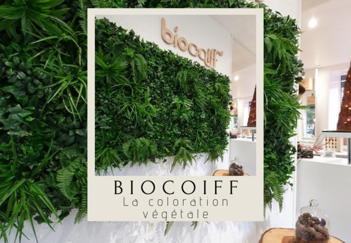Biocoiff Evreux : la coloration végétale
