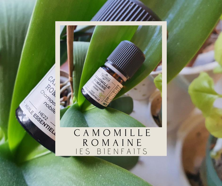 huile-essentielle-camomille-romaine