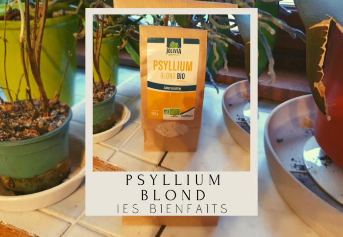Psyllium blond : les bienfaits sur la santé