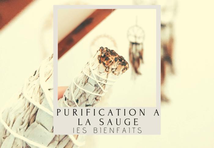 Purification à la sauge : les bienfaits