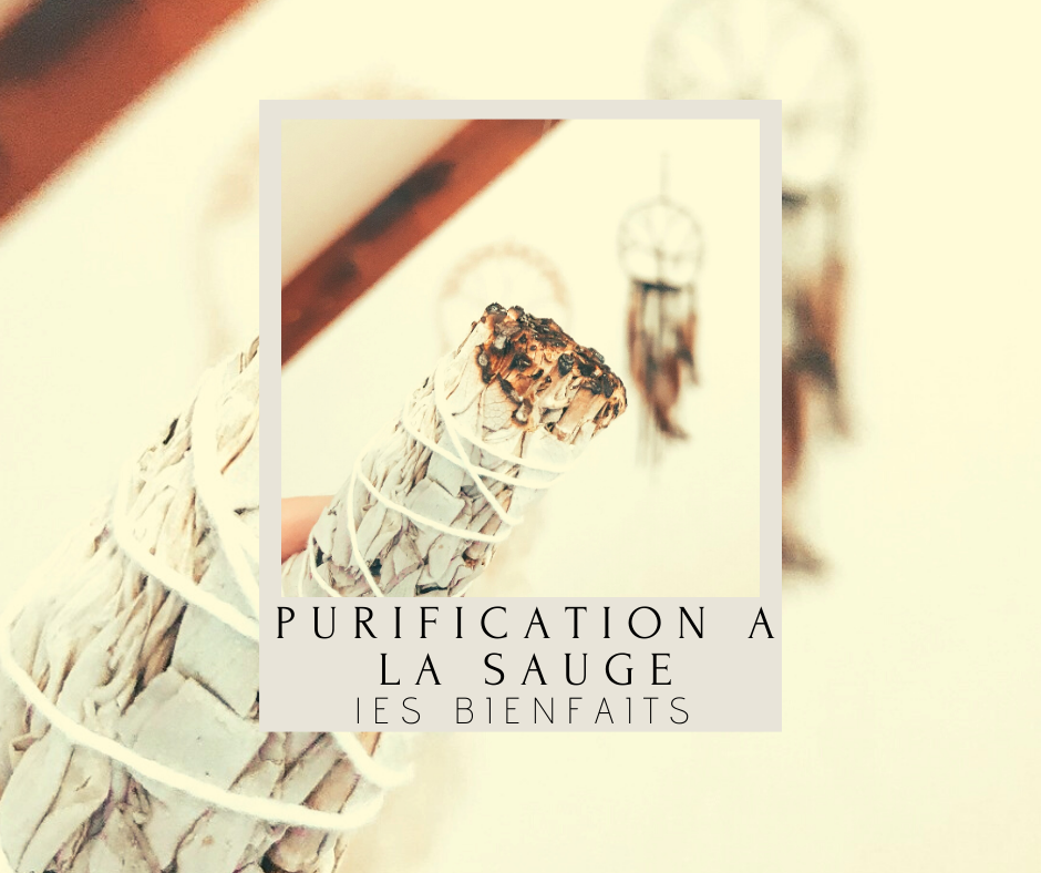 purification-a-la-sauge