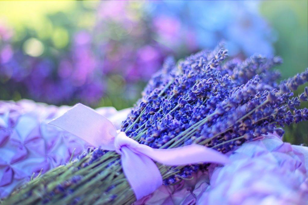 aromathérapie-lavande