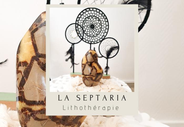 Les vertus de la Septaria en Lithothérapie